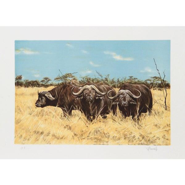 "Joseph Vance, ""Cape Buffalo,"" Lithograph For Sale"