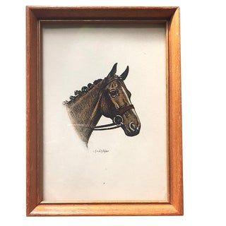 C. Fred Sitzler Framed Horse Portrait For Sale