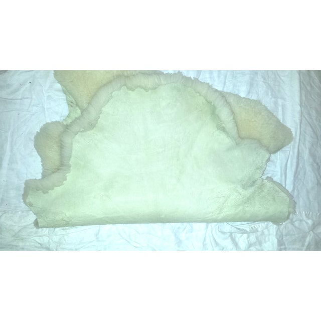 Vintage New Zealand Sheepskin Rug or Throw - Image 4 of 5