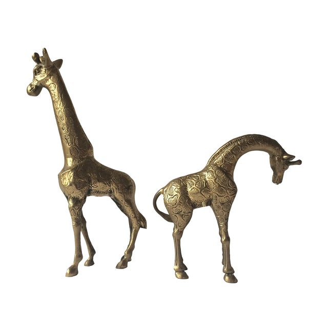 Vintage pair of monumental brass giraffe sculptures. These are fabulous for styling. Gorgeous detail and polished to a...