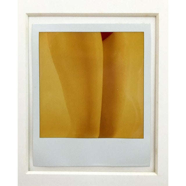 Abstract 1970s Polaroid Photographs by R. R. Twarog For Sale - Image 3 of 10