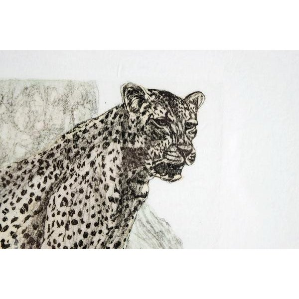 Hand-Colored Cheetah Engraving by Victor Hohne - Image 2 of 7