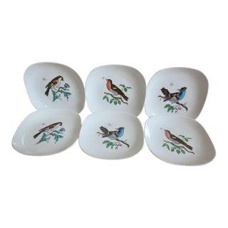 Vintage Richard Ginori Birds & Flies C-8 Salad/Dessert Porcelain Plates - Set of 6 For Sale