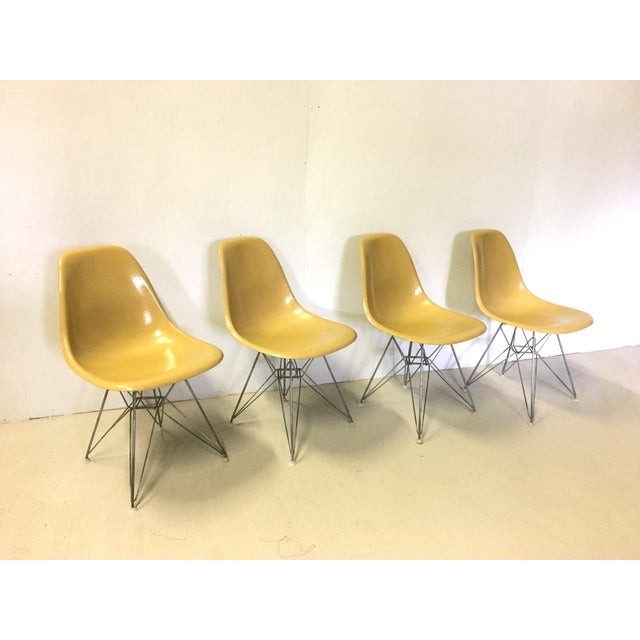 Yellow Set of Four Herman Miller Eiffel Base Fiberglass Shell Chairs For Sale - Image 8 of 8