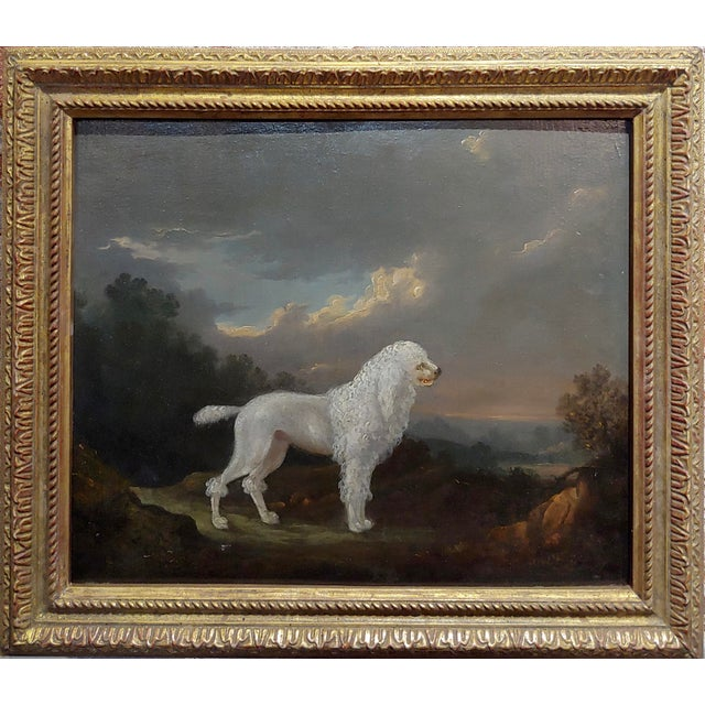 18th century Portrait of a White Poodle in a Landscape-Oil painting c.1780/1800 oil painting on board -Signed English ,...
