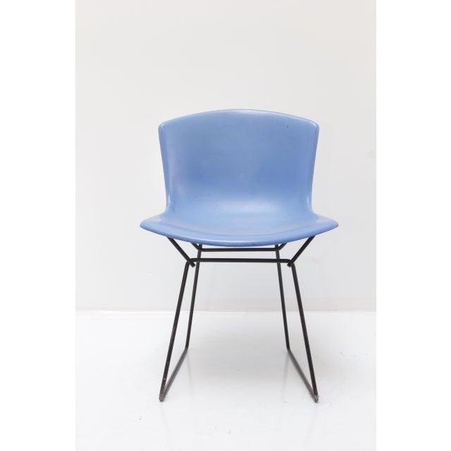 Knoll Bertoia Fiberglass Side Chair Blue - Image 2 of 11