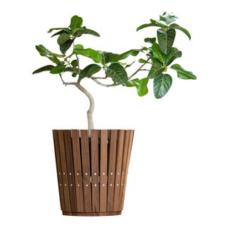 Customizable Plantum American Hardwood Modular Planter Cover For Sale