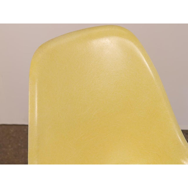 Mid-Century Modern Canary Yellow Eames Shell Chair on Maple Dowel Base for Herman Miller For Sale - Image 3 of 8