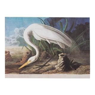 XL Vintage Lithograph of White Heron, 1966