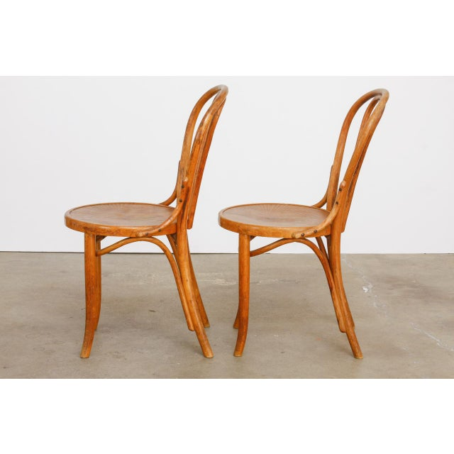 Early 20th Century Michael Thonet No. 18 Bentwood Viennese Cafe Chairs - a Pair For Sale - Image 5 of 13