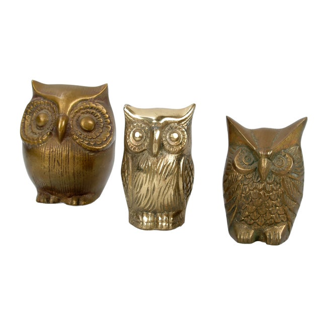 Brass Owl Figurines - Set of 3 - Image 1 of 6