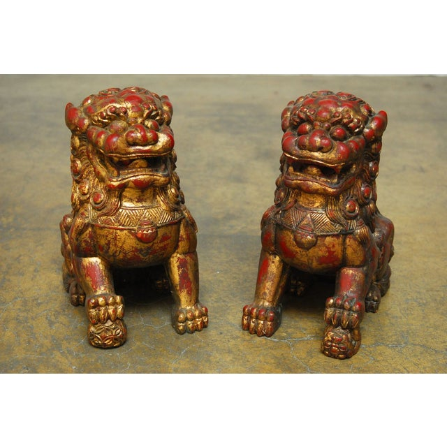 An impressive pair of well carved Foo dogs or lion statues in the manner and scale of temple carvings from 1950. Red...