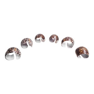 Unique Tiger Cowrie Sea Shell Napkin Rings - Set of 6