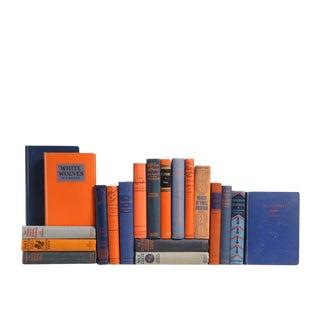 Orange & Blue Vintage Book Set - Twenty Decorative Books For Sale