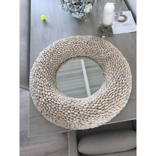 Currey and Company Coyle Shell Wall Mirror For Sale In West Palm - Image 6 of 6