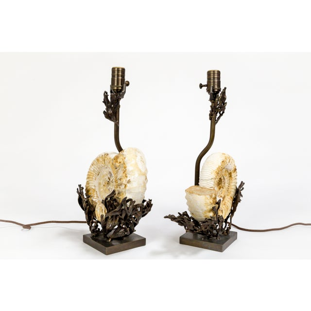 Stunning cast bronze lamps and finials with fossilized Ammonite by Tuell + Reynolds. Each lamp is unique. Matching tint on...