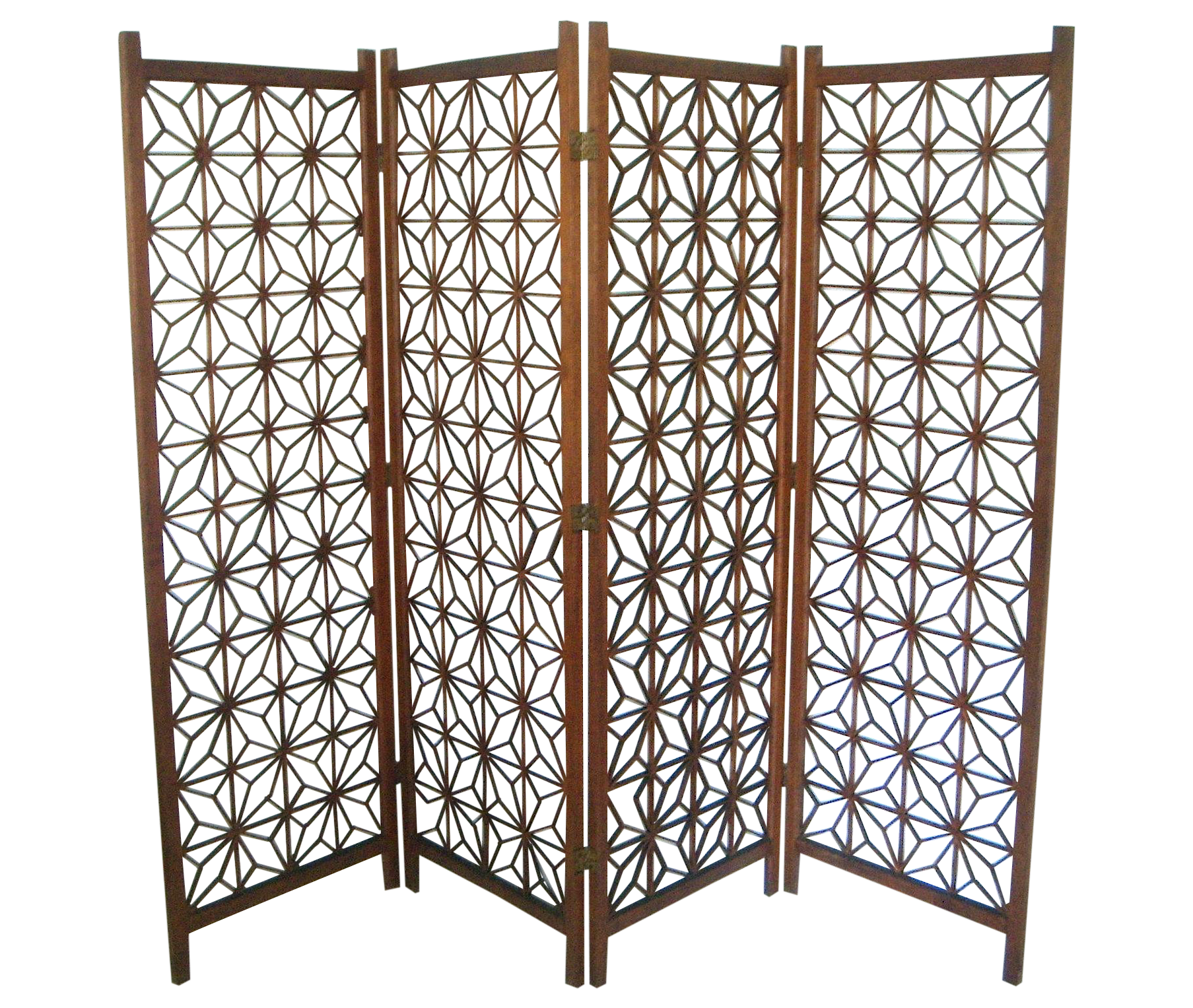 Oriental Double Hinged Room Divider Chairish