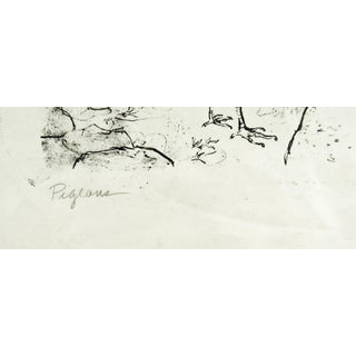 """""""Pigeons"""" Black & White Lithograph Preview"""