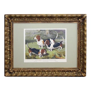 English Chromolithograph of Basset Hounds, Circa 1881 For Sale