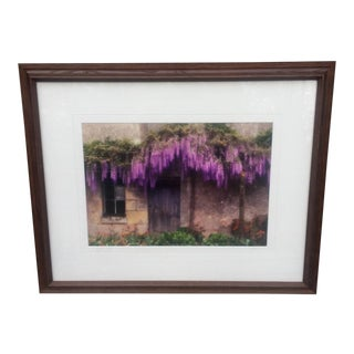 Wisteria - Loire Valley France Photograph For Sale