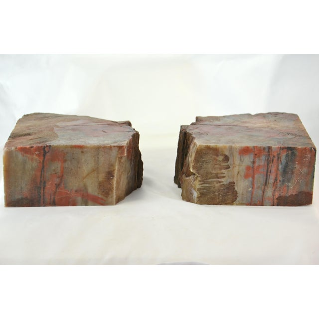 Stone Iron Red Petrified Wood Slice Bookends - A Pair For Sale - Image 7 of 8
