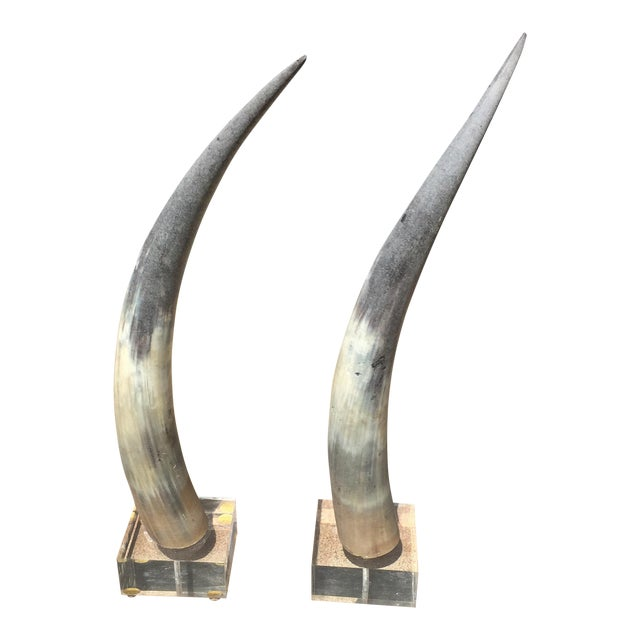 Vintage Tusk/Horn Decorations- A Pair For Sale