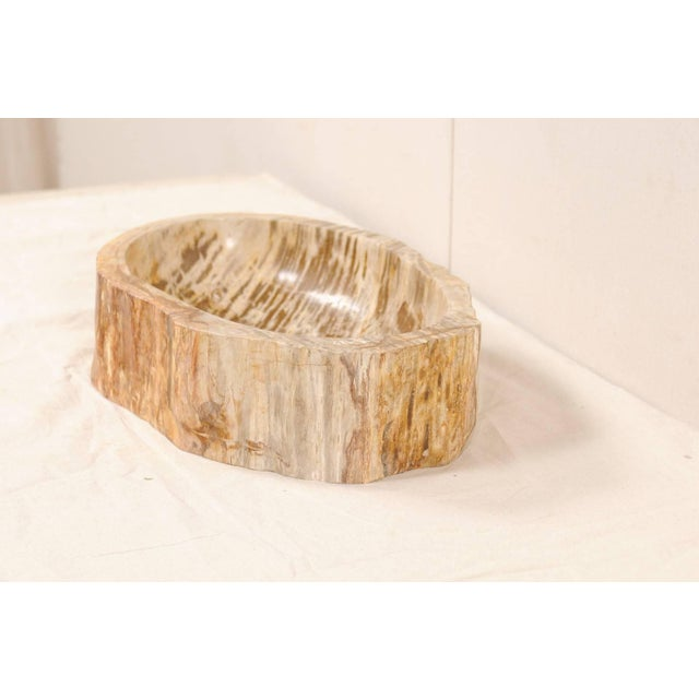 Contemporary Organic Modern Polished Petrified Wood Sink For Sale - Image 3 of 9