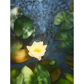 """Laurie Flaherty """"Night Swimming"""" Contemporary Nature Realist Oil Painting For Sale"""