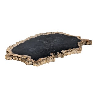Petrified Wood Fossil Tray For Sale