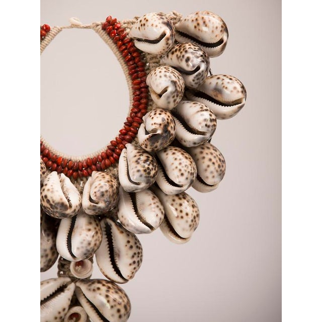 Fabric Vintage Grand Scale Cowrie Shell Necklace circa 1980, Africa, Mounted on Custom Stand For Sale - Image 7 of 9