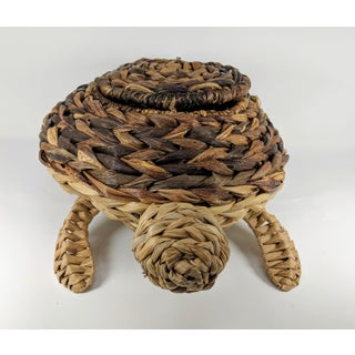 Mario Lopez Torres Style Rattan Turtle Sculpture Preview