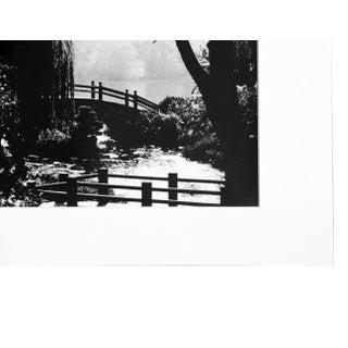 """""""Garden of Peace"""" Black & White Photograph Preview"""
