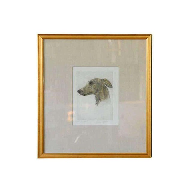 Gray Colored Etching of Whippet Hunting Dog For Sale - Image 8 of 8