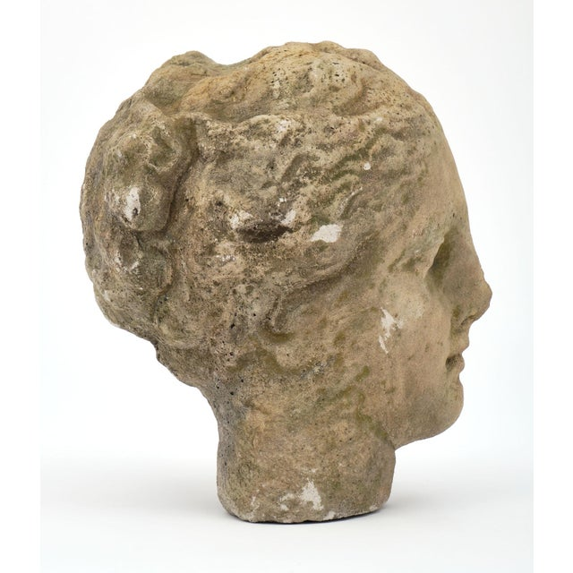 Antique Stone Bust of Greek Goddess Athena For Sale In Austin - Image 6 of 10