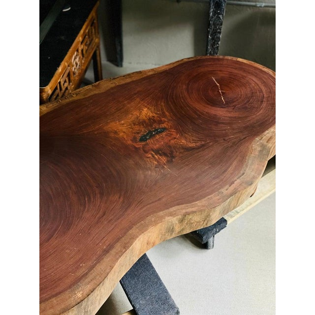 Mid-Century Modern Live Edge Cocktail Table, Belgium 1960's For Sale - Image 3 of 8