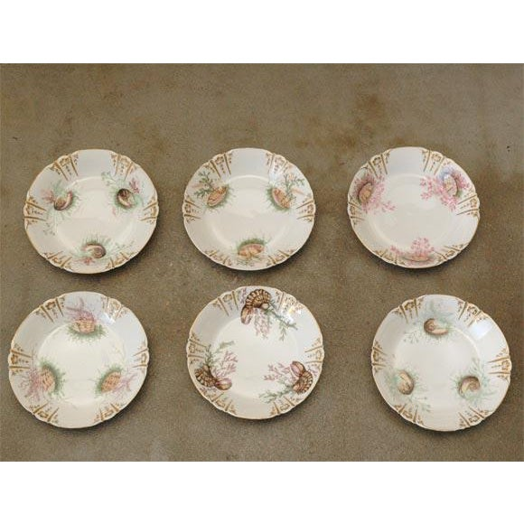 Shell Decorated Dishes - Set of 6 For Sale - Image 9 of 9