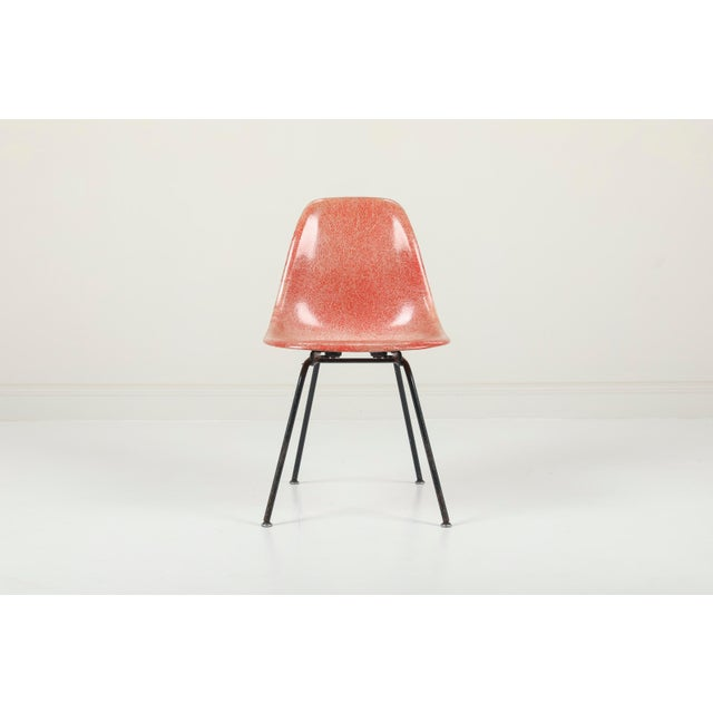 1950s 1950s Vintag Herman Miller Eames Dsx Chairs - Pair For Sale - Image 5 of 11