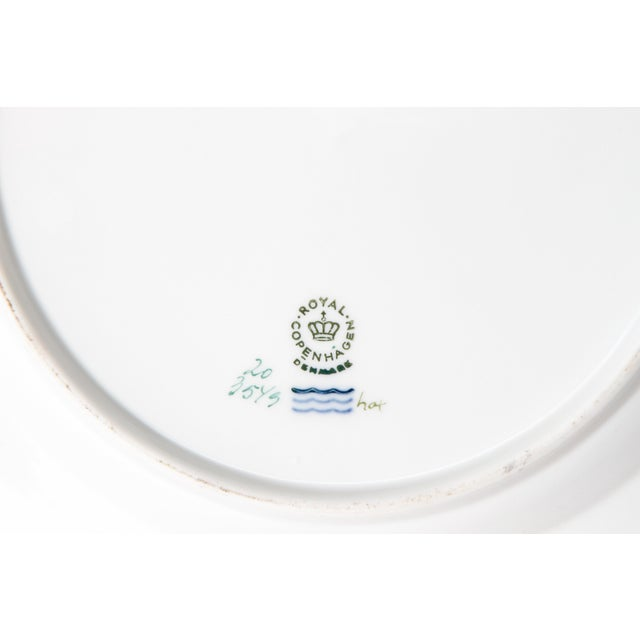 Pair of Flora Danica Plates by Royal Copenhagen #20/3573 and #20/3549 For Sale - Image 9 of 13