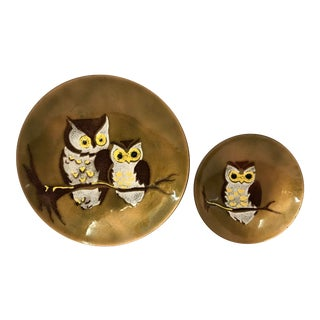 Vintage Enamel Over Metal Owl Plates-a Pair For Sale