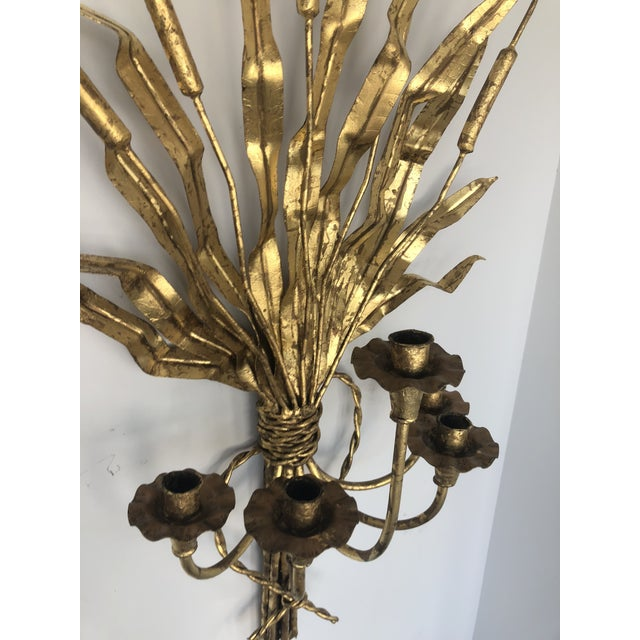 Hollywood Regency Gold Gilt Iron Candelabra With Cat Tail Motif For Sale - Image 3 of 13