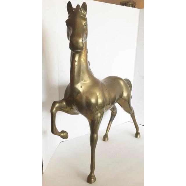 Large Bronze Horse - Image 5 of 8
