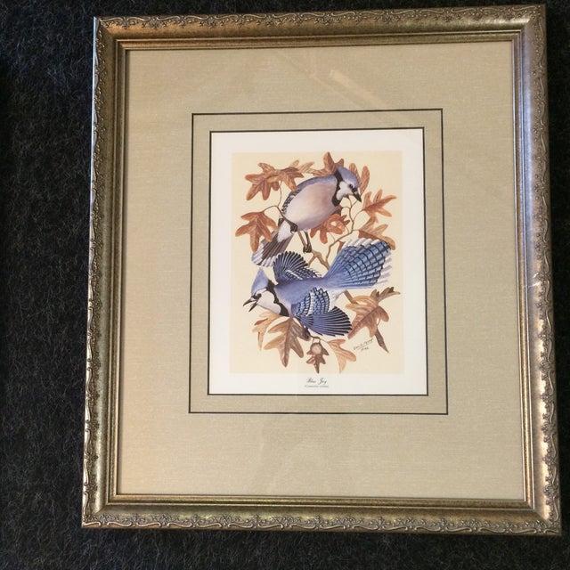 Realism Vintage Earl O Henry Bird Prints - 4 Framed Prints For Sale - Image 3 of 13