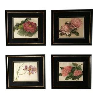 "Framed ""Botanical"" Chromolithographic Prints, England 1870-1880 - Set of 4 For Sale"