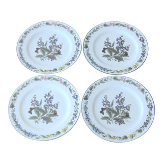 "1990 English Royal Worcester ""Worcester Herbs"" 8'' Plates - Set of 4 For Sale"