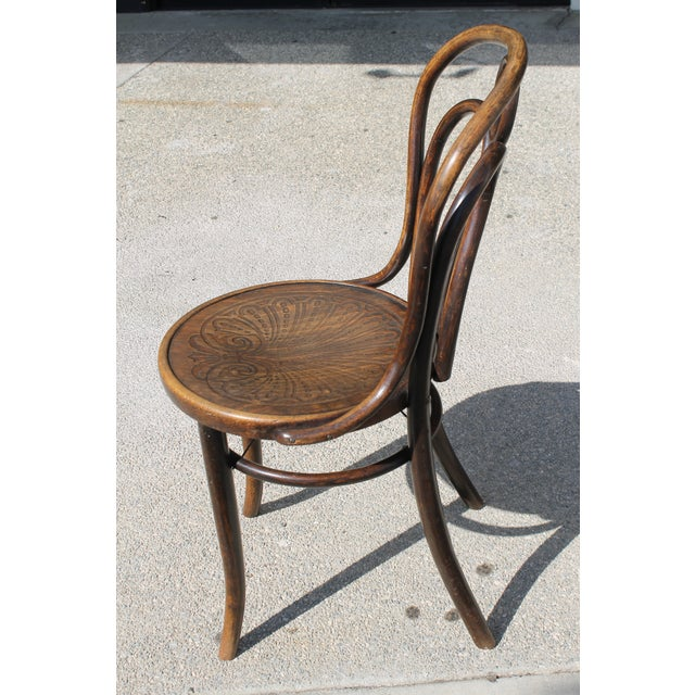 1900 - 1909 Mundus and J J Kohn Ltd Bentwood Chairs - Set of 6 For Sale - Image 5 of 12
