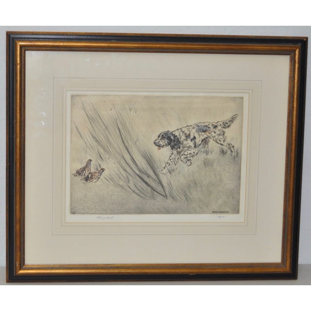 Henry Wilkinson English Sporting Dog Etching - Image 2 of 6