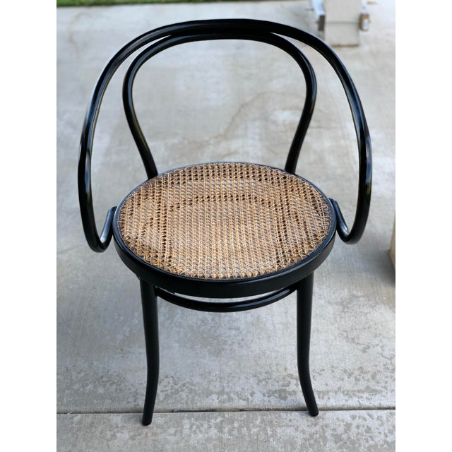 1950s Vintage Stednig-Thonet Bentwood Cane Parlor Chairs -A Pair For Sale In Phoenix - Image 6 of 10