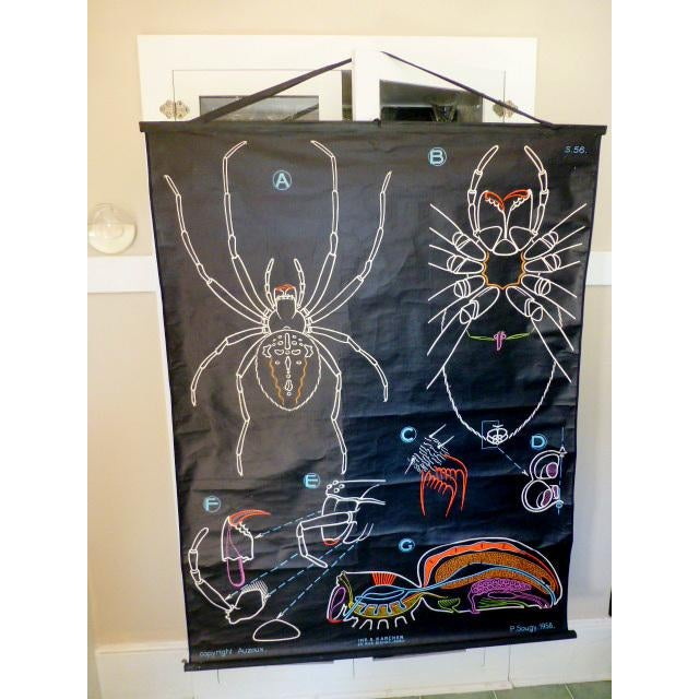 French Vintage Chalk Plate Garden Spider For Sale - Image 4 of 8