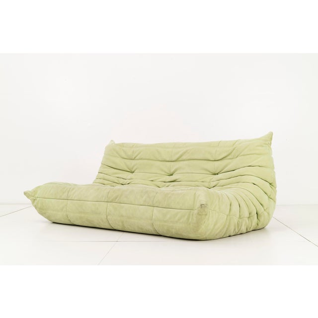 Michel Ducaroy for Ligne Roset. Pair of three-seat sofas upholstered in a faded lime suede. Original label on back [Made...