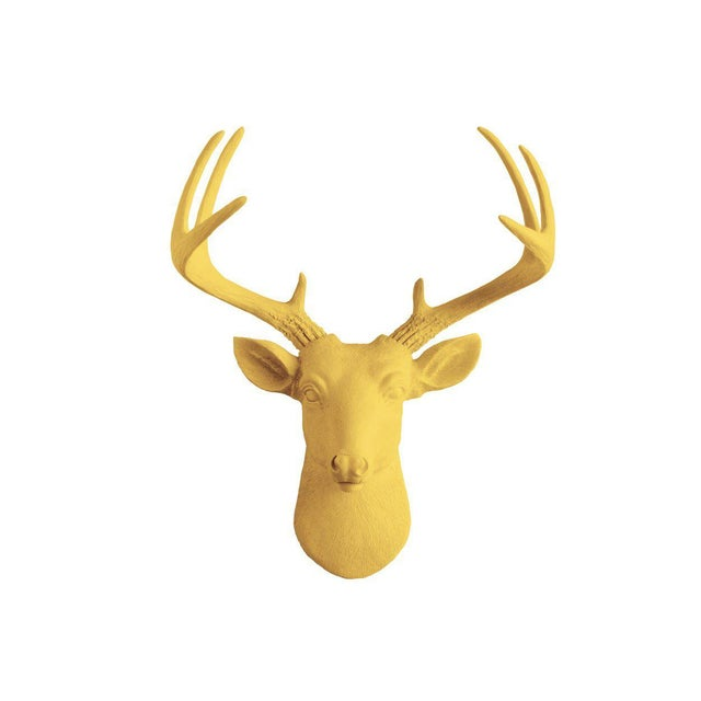 Wall Charmers Curry Orange Faux Taxidermy Mini Deer Head Mount For Sale - Image 4 of 4